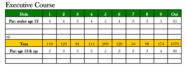 executive course scorecard